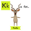 K letter tracing. Kudu standing on two legs. Cute children zoo alphabet flash card. Funny cartoon animal. Kids abc education. Learning English vocabulary. Vector illustration.