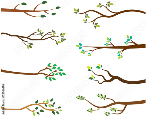 Vector Set of Tree Branches with Green Leaves Wallpaper Mural
