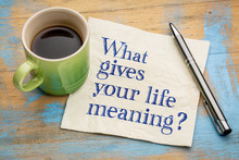 What Gives Your Life Meaning Q...