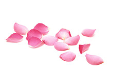 Petals Of Roses On A White Bac...