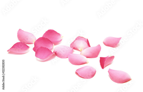 Tuinposter Roses Petals of roses on a white background