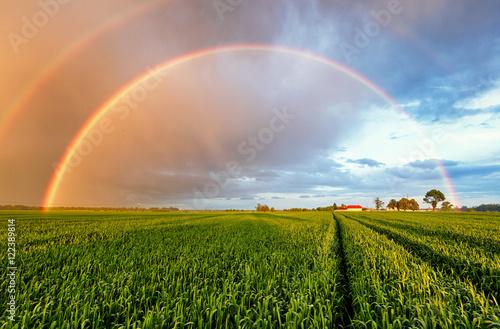 Foto auf Gartenposter Landschappen Rainbow Rural landscape with wheat field on sunset