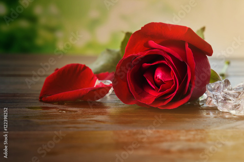 Fototapety, obrazy: Sigle red rose with ice on wooden table in vintage style