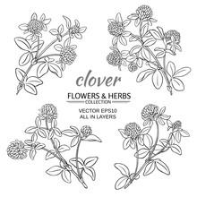 Clover Vector Set
