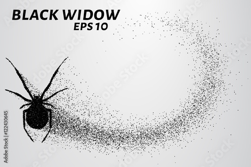 Photo  Black widow from the particles