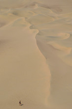 Sand-boarding Fun On Atacama Desert, Oasis Of Huacachina, Ica Region, Peru