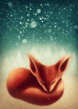 Fox Sleeping In Winter Forest