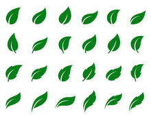 Set Of Leaf Icons