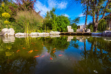 Pond In A Beautiful Creative Lush Green Garden