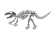 Dinosaur Skeleton Vector Illus...