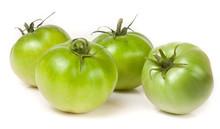 Four Green Unripe Tomato Isola...
