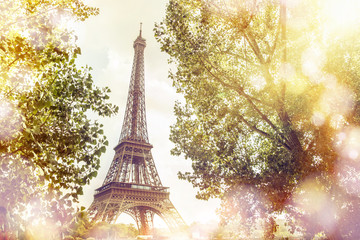 FototapetaView on Eiffel tower through green summer trees with sunset rays. Beautiful Romantic background. Eiffel Tower from Champ de Mars, Paris, France.