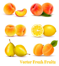 Big Group Of Yellow And Orange Fruits. Vector.