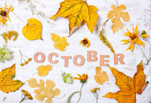 """The Word """"October"""" With Yellow Leaves"""