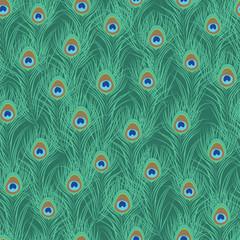 Tapeta Peacock feather seamless pattern. Vector illustration