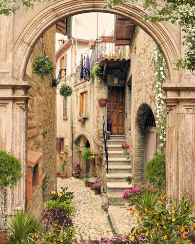 Photo  Old arch with open doors. Flovers and antique street view