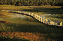 Dusk, Bowley Pond, Greenwich Dunes, Kings County, Prince Edward Island National Park, Canada.