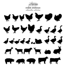 Farm Animals Silhouettes Collection Isolated On White Vector