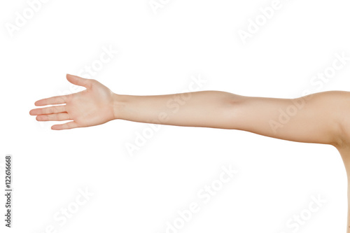 Valokuva  whole female hand with the palm on a white background