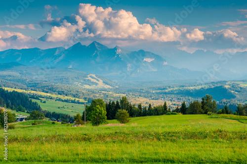 Fototapeta Górska łąka  obraz na płótnie