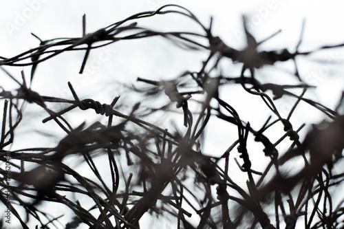 Fencing. Fence with barbed wire. Let. Jail. Thorns. Block. A prisoner. under tension. Holocaust. Concentration camp. Prisoners. Depressive background.