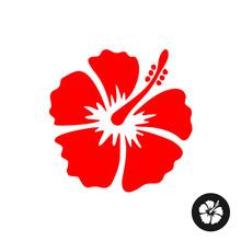 Hibiscus Red Flower Illustration