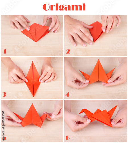 Photo  Origami tutorial
