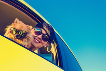 Young Girl And Dog In Car On Summer Travel. Funny Dog With Sungl