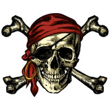 Pirate skull and crossbones bandana and an earring