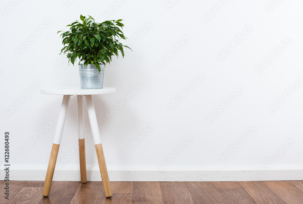 Fototapety, obrazy: simple decor objects, minimalist white interior