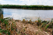 Spot On Banks Of Lake Or River