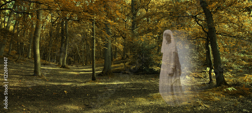 Ghostly figure gliding through Autumn Forest  - Wide autumnal woodland scene wit Wallpaper Mural