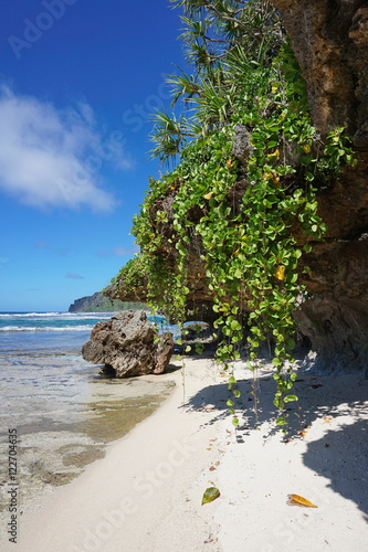 Foto op Canvas Restaurant Sea shore with small sandy beach and creeping plant hang down from the rocks, Rurutu island, south Pacific ocean, Austral archipelago, French Polynesia