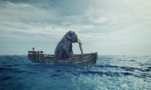 Elephant In A Boat At Sea.