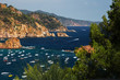 Sea and anchored boats through the plants and trees, Tossa de Mar, Spain