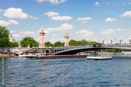 Foto op Plexiglas Historisch geb. Bridge of Alexandre III over river Seine at summer sunny day, Paris France