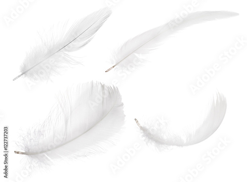 four pure white isolated feathers