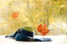Season When You Need Warm Drinks/ Green Circle In The Scarf, The Window With Maple Leaves And Drops After Rain In Autumn