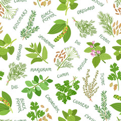 Panel Szklany Przyprawy Herbs and spices seamless pattern on white background