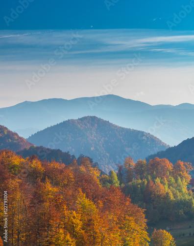 Tuinposter Purper October autumn scenery in remote mountain area in Transylvania