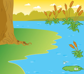 Fototapeta na wymiar The illustration shows the part of the shore of a pond with reeds and water lilies