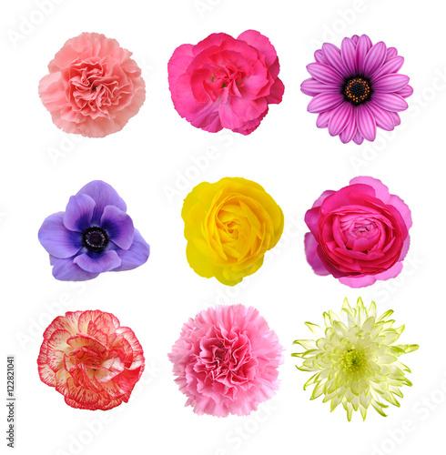 Photo  mix flower