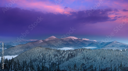 Foto op Aluminium Snoeien Panoramic landscape of colorful winter sunrise in the mountains. View of the forest covered by snow and peaks in distance.