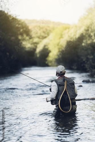Fotografie, Tablou Fly fisherman using flyfishing rod.
