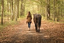 Spaziergängerin Mit Pferd