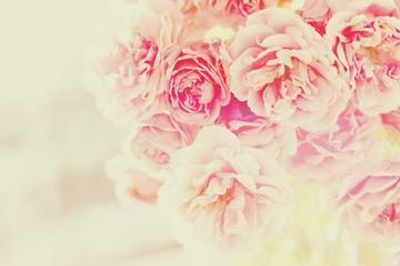 FototapetaRosenblüten