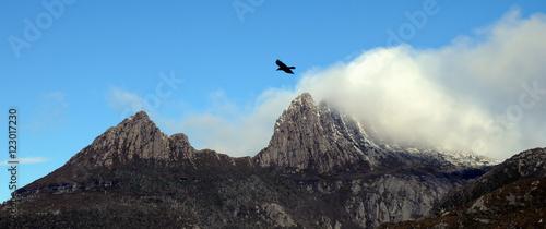Valokuva  Foggy peak of Mt.Cradle in Tasmania Australia
