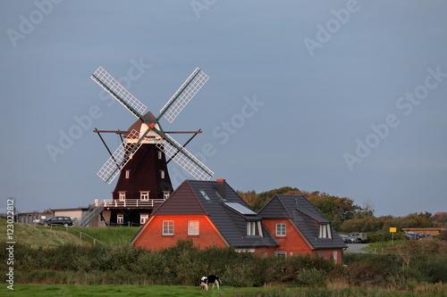 Aluminium Prints Mills Die HIstorische Windmühle von Pellworm in Deutschland