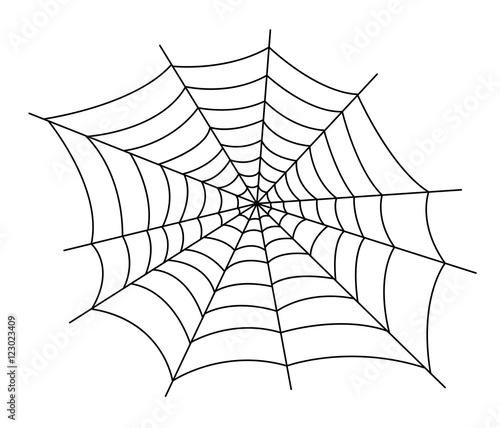 Obraz na płótnie spider web vector illustration