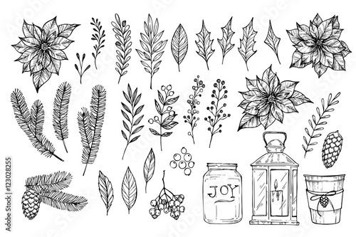 Fototapeta Hand sketched vector vintage elements ( laurel, frame, leaf, poi obraz